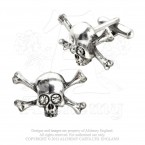 Skull 'n' Bones Stargazer Cufflinks